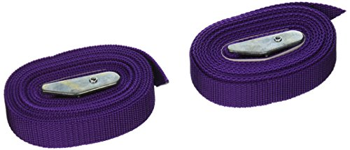 Strapits Cam Buckle - CLC Custom Leathercraft 2WS08 Strap-It Web Tie Down Straps, Purple, 8-Foot, 2-Pack
