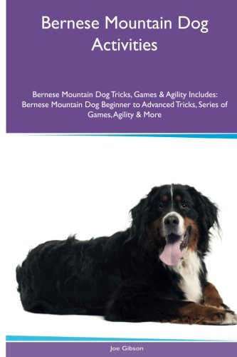 Download Bernese Mountain Dog Activities Bernese Mountain Dog Tricks, Games & Agility. Includes: Bernese Mountain Dog Beginner to Advanced Tricks, Series of Games, Agility and More PDF