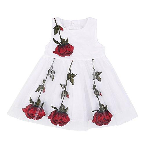 BOBORA Baby Girls Rose Lace Mesh Princess Tutu Dress