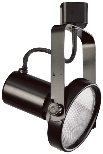 Elco Lighting ET630B Line Voltage PAR30 Gimbal Fixture with Barndoors