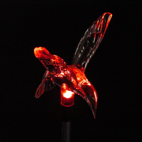 Garden Decor Flybird 7 Color Solar Power Bird Stake Light by AC2