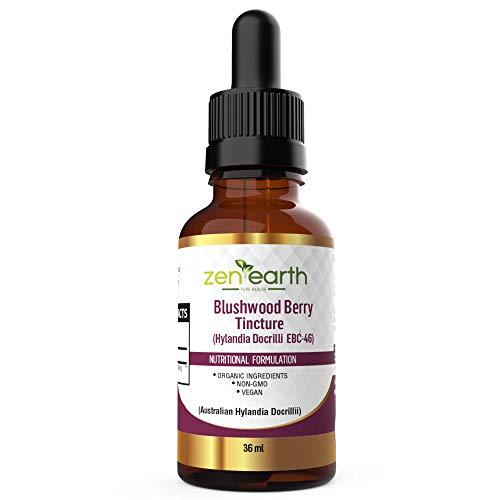 Blushwood Berry Tincture 36 ml Hylandia Dockrillii from Australia by I Am Healthy Store (Image #1)