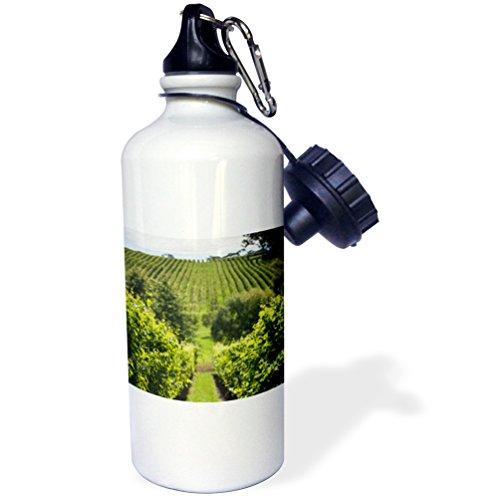 danita-delimont-australia-adelaide-hills-gumeracha-vineyard-21-oz-sports-water-bottle-wb-226305-1