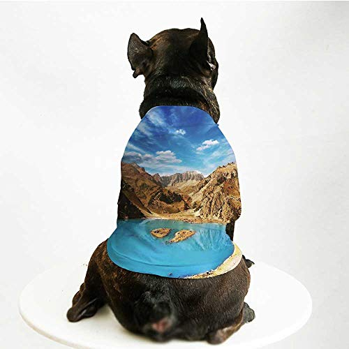 YOLIYANA Landscape Stylish Pet Suit,A Crater Looking Lake Barren Pamir Mountains Asia in a Summer Day for Small Medium Big Dogs,L (Crater Mountain Hoodie)