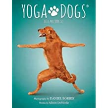 AzureGreen Yoga Dogs Tarot Cards by Borris & DeNicola