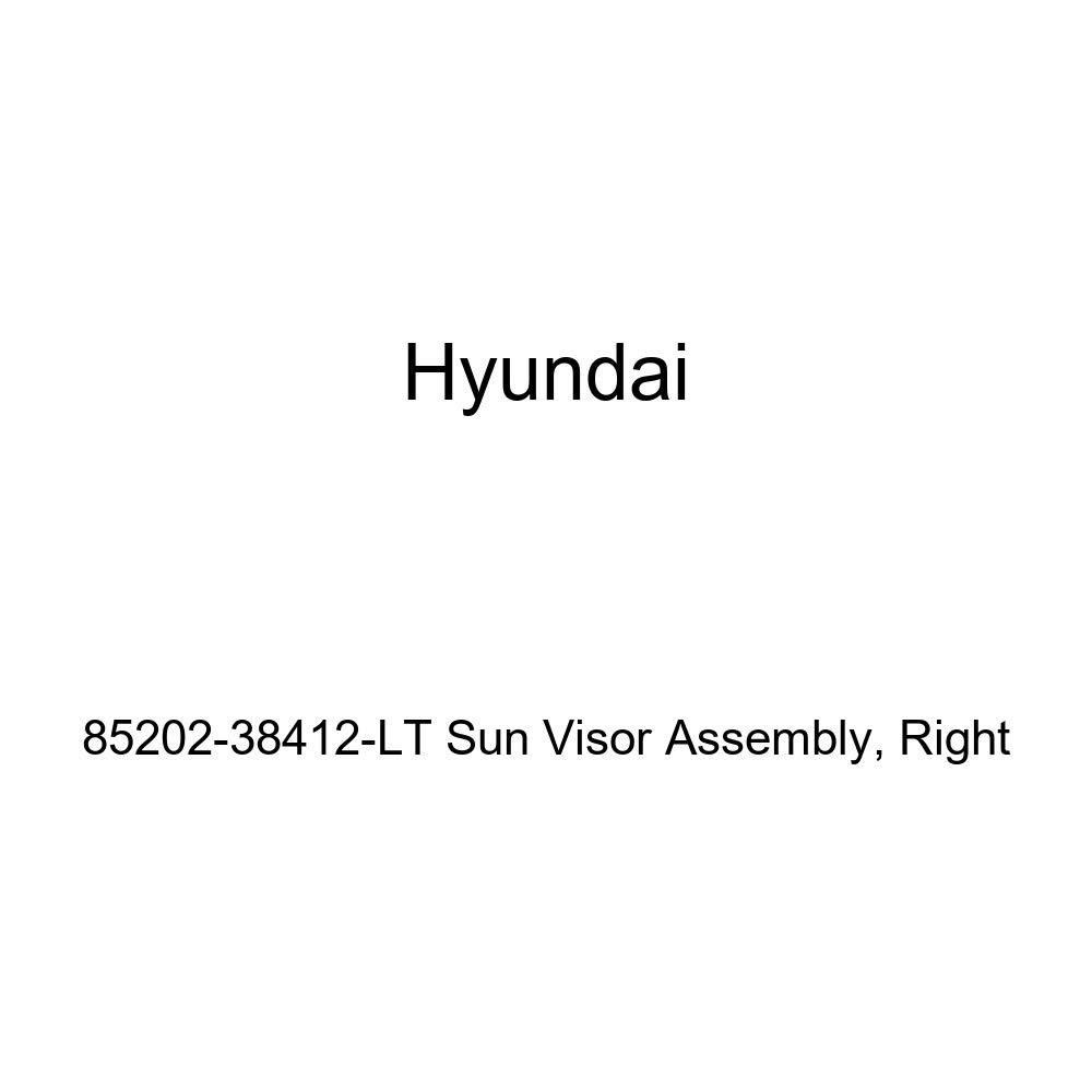 Right Genuine Hyundai 85202-39810-CI Sun Visor Assembly