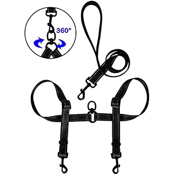 Amazon Com Tacobear Dual Dog Leash For Two Dogs No Tangle Coupler