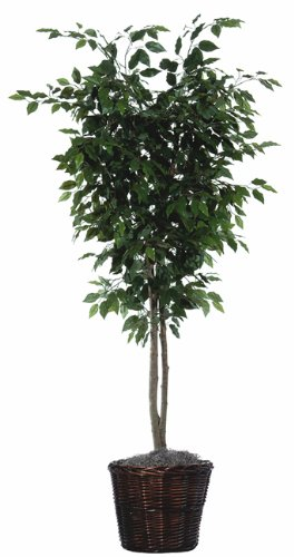 VCO 6' Potted Artificial Deluxe Ficus Tree