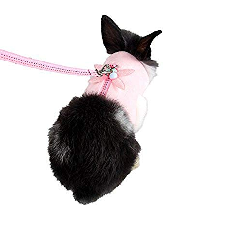 Ocamo Service Small Pet Vest Harness + Traction Rope Leash, Rope Leash for Dutch Pigs Squirrels Hedgehogs Chinchillas Pink L -