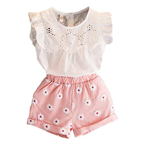 2PCS Set Toddler Kids Baby Girls Outfits Clothes T-Shirt Vest Tops+Shorts Pants(2-6 T) (Pink, 3 T)