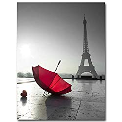 Paris Eiffel Tower Red Rose Flower Landscape Posters and Prints Wall Art Canvas Painting Black White Picture Modern Home Decor (Picture 1, 15x25cm No Frame)