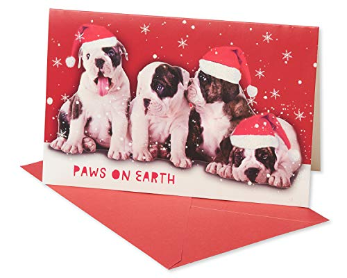 American Greetings 6027093 Deluxe Dog Christmas Boxed Cards and Red Envelopes, 14-Count,