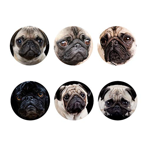 Coaster Pug (STARTERY Coasters Cute Black Grey Pug Set of 6 Placemats, Durable Non Slip Coffee Drink Cup Mats)