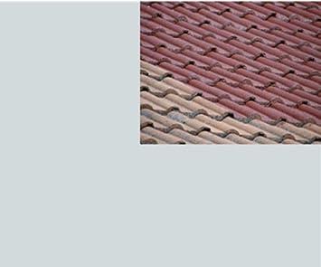 6,49EUR/L   10L Ziegelfarbe Dachfarbe Dachbeschichtung Dachversiegelung In  Lichtgrau Dachrenovierung Metalldach Blechdach