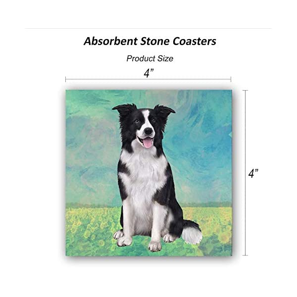Border Collie Coasters - Moisture Absorbing Stone Coasters with Cork Base, Prevent Furniture from Dirty and Scratched, Stone Coasters set Suitable for Kinds of Mugs and Cups, Set of 4 2