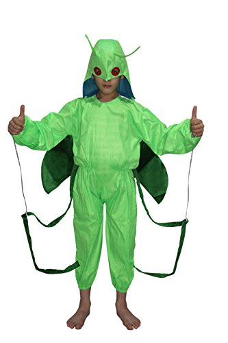 Grasshopper fancy dress for kids,Insect Costume for Annual function Theme Party]()