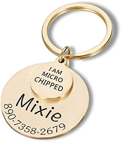 DHDHWL Pet Tag Personalized Pet ID Tag I AM MICRO CHIPPED Anti-lost Engraved Pet ID Name for Cat Puppy Dog Collar Tag Pendant Keyring Pet ID Personalised (Color : Gold)