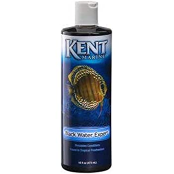 Amazon Com Kent Marine Akmbwe16 Black Water Stimulater For