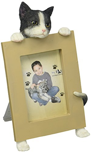 E&S Pets Small Cat Frame (Memorial Pet Breed)