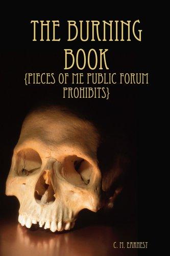 The Burning Book ebook