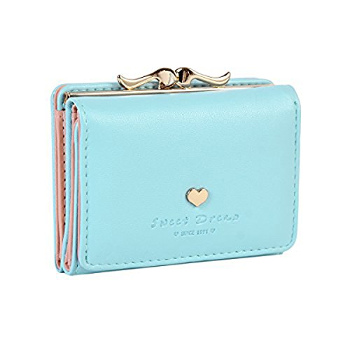 Jastore Girls Womens Small Clutch Leather Purse Cards Holder Wallet (Blue)