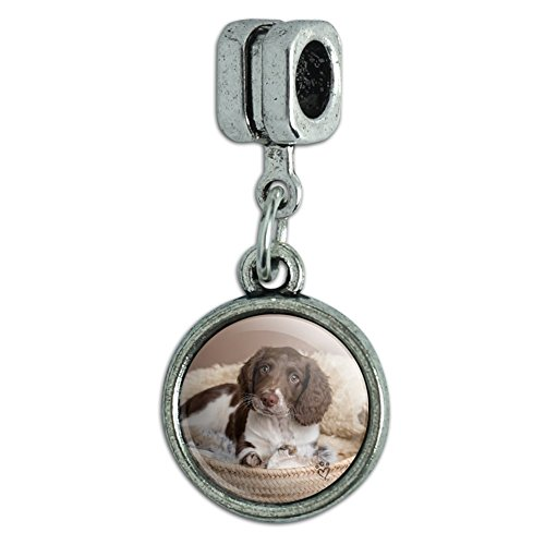 Graphics and More Springer Spaniel Puppy Dog Basket Bed Italian European Style Bracelet Charm Bead