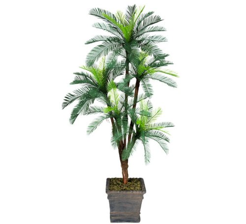 Cycas Palm Tree - One 6' Cycas Artificial Palm Tree with 5 Heads _plastic Head, with No Pot,
