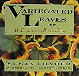 Variegated Leaves, Susan Conder, 0025273302