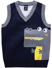 2f446de15 Boy s Sweater Vests