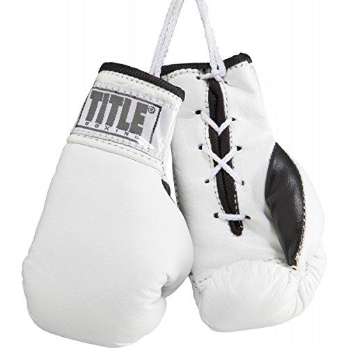 TITLE Leather Mini Pro Fight Gloves, (Pro Fight Gloves)