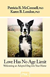Love Has No Age Limit-Welcoming an Adopted Dog into Your Home