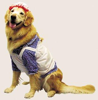 Morris Costumes - Raggedy Ann Dog Costume
