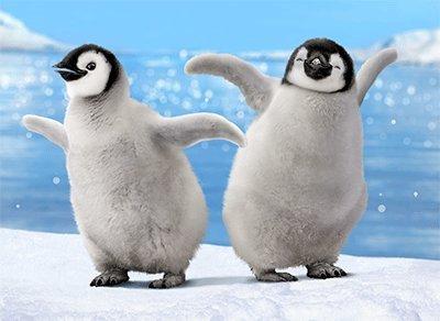 penguins dancing bump