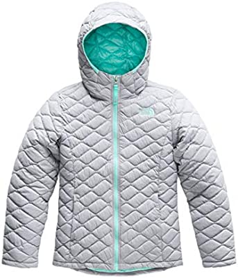 3c0879441 The North Face Kids Girl's Thermoball Hoodie (Little Kids/Big Kids ...