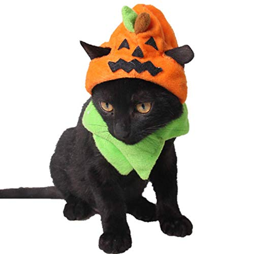 Halloween Hats For Cats (ANIAC Pet Halloween Pumpkin Hat with Neckwear for Cats)