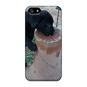 Top Quality Rugged Checking Out The Birdbath Case Cover For Iphone 5/5s