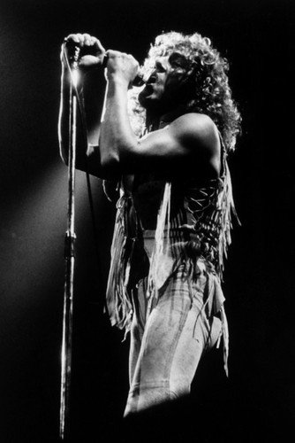 Roger Daltrey in The Kids Are Alright 24x36 Poster The Who