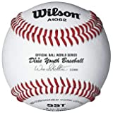 Best Wilson Youth Bats - Wilson A1062 Dixie Youth Tournament Series Baseball (12-Pack) Review