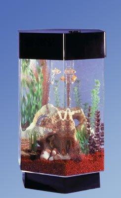 Midwest Tropical Six Sided Aquascape Aquarium