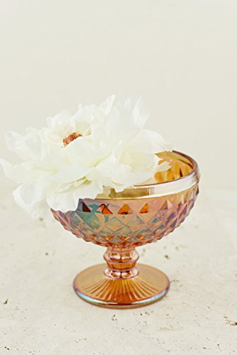 Cut Glass Compote (3 Pieces of Copper Luster Glass Dove Compote 5in. Pedestal Bowl 5in. Tall x 4in. Wide x 2in.)