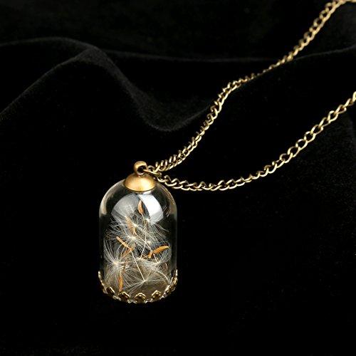 usongs Korean Dandelion plant specimens dried flower necklace pendant glass bottle Wishing sweater chain -