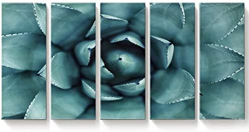 EZON-CH Large Wall Art Light Blue Agave Succulent Plants Canvas Prints Succulent Flower Large Art Canvas Printing 5 Pieces Extra Large Canvas Wall Art Print 80 Inch Total