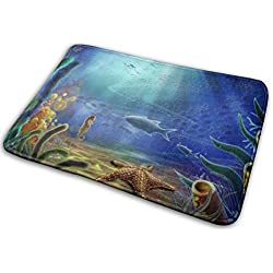 Pyta Non-Slip Doormats Under Water Entrance Rug Indoor/Outdoor Carpet Absorbs Moisture Washable Dirt Trapper Mats