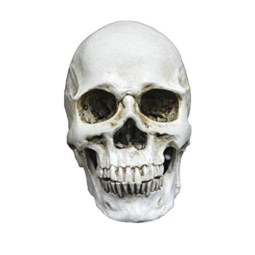 Polymer Mini Resin Human Skull Replica Skeleton Model with Removable Teeth Funny Halloween Costumes Hounted House Scary Creepy Prop Masquerade Decoration Ornaments for Friends -