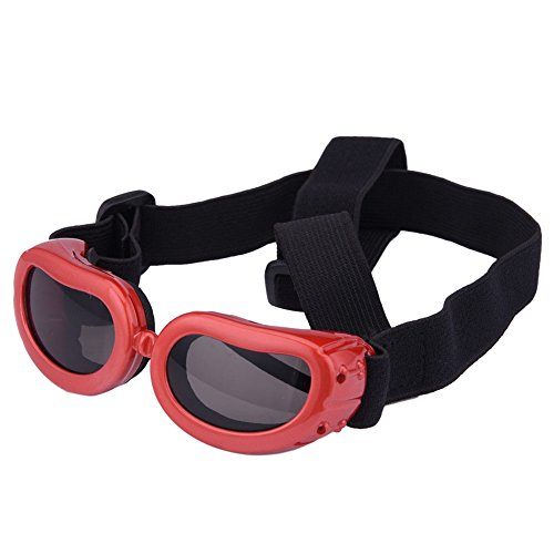 Outdoor Dog Sunglasses Anti-UV Eye Protection Goggles Waterproof Windproof Anti-Fog for Small Pet Puppy Cat - Dog Sunglasses Red