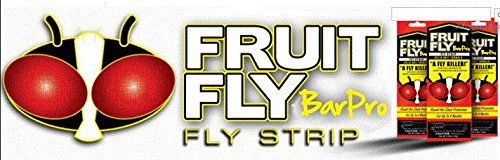 Amazon Com Fruit Fly Barpro Fly Control Strip Case Of 10 10