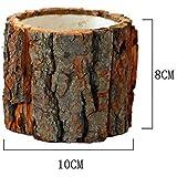 Desktop Forest piccoli vasi con corteccia in legno naturale stile vaso di fiori casa ufficio giardino decorativo organizer portaoggetti, s