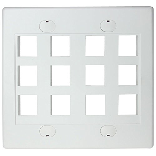 RiteAV - Keystone Wall Plate Double Gang 12-Port White (1 Piece Flush) (Double Gang Coax Wall Plate)