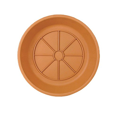 Southern Patio SA0624TC Poly-Resin Saucer, Terra Cotta, 6 Inches