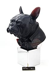Crystal Dandy's Charles Black Bulldog